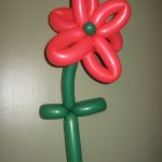 Balloon Christmas Poinsettia
