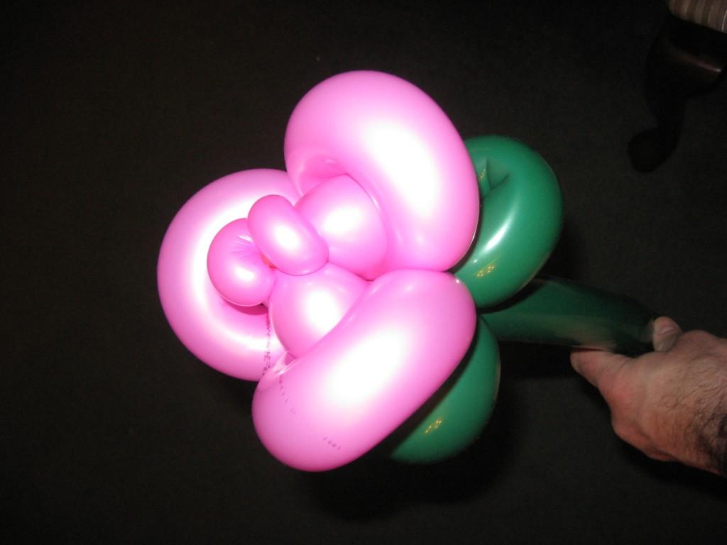 Pink Balloon Rose